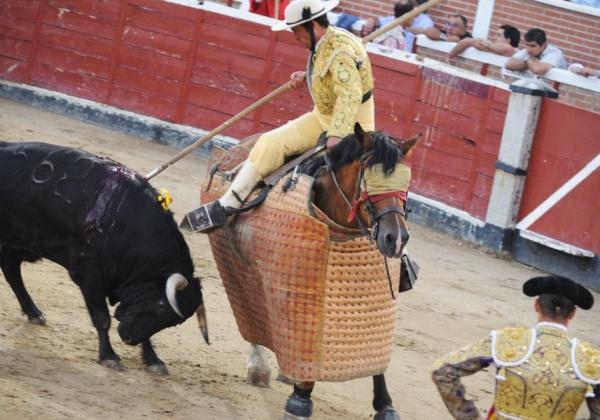 Empêchez les taureaux de se faire tuer dans les corridas