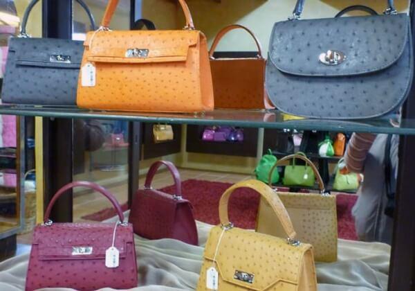 Des révélations chez un fournisseur d'Hermès montrent le massacre de jeunes autruches pour des sacs de « luxe »