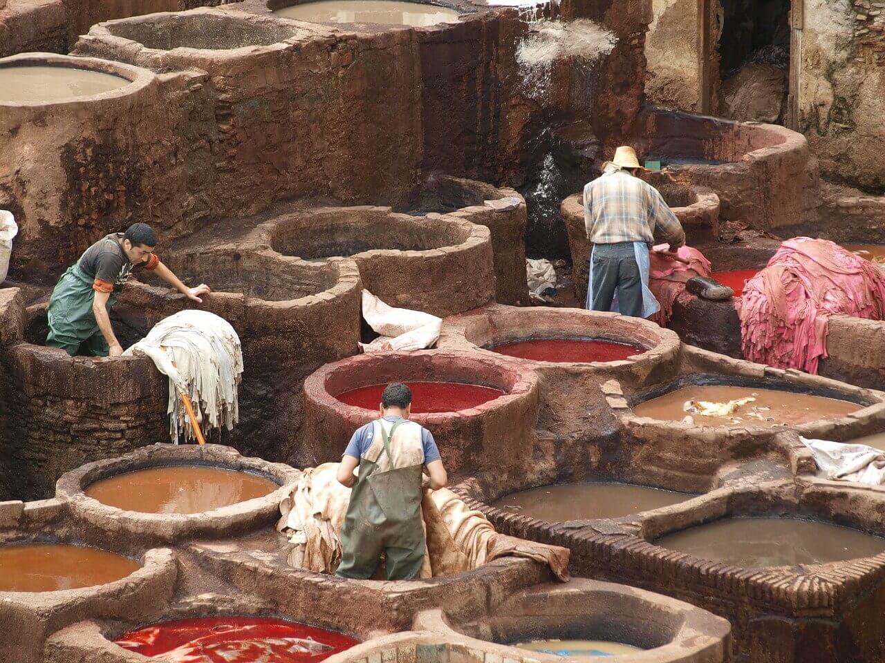 D Ou Vient Le Cuir l'industrie du cuir   animaux utilisés pour les vêtements