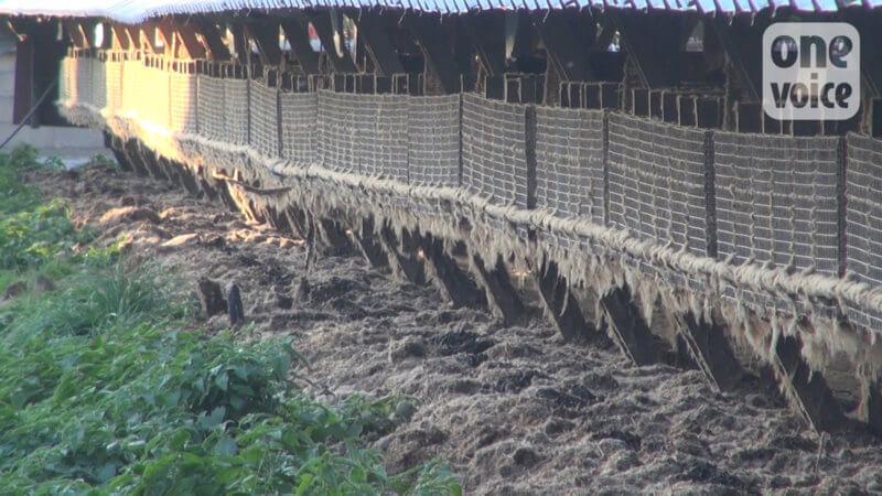 élevage vison france pollution excréments