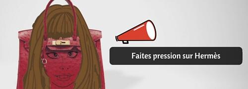 Faites pression sur Hermès Birkin sac