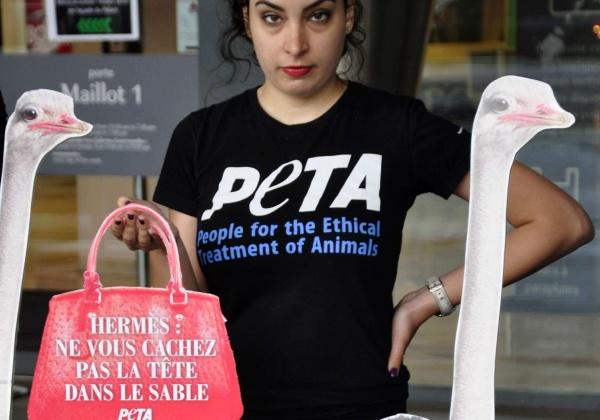 PETA États-Unis confronte Hermès en pleine assemblée des actionnaires