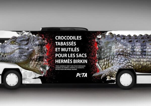 On peut massacrer des crocodiles pour des sacs à main mais pas en informer le public