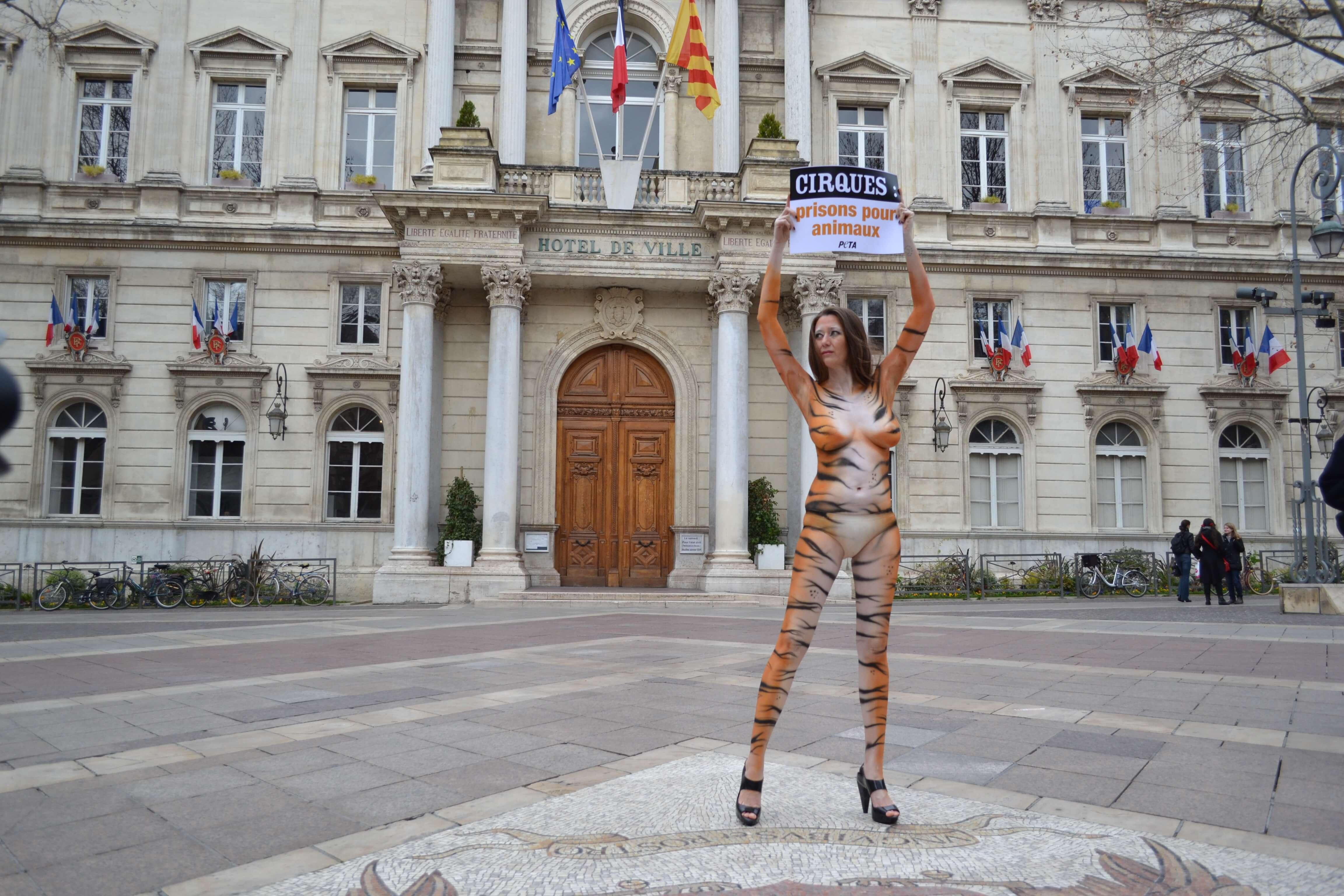 Pourquoi j'ai parcouru nue les rues d'Avignon pour les animaux captifs des cirques