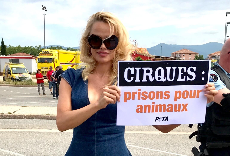 Pamela Anderson demande à TOUS les maires de France d'interdire les cirques animaliers