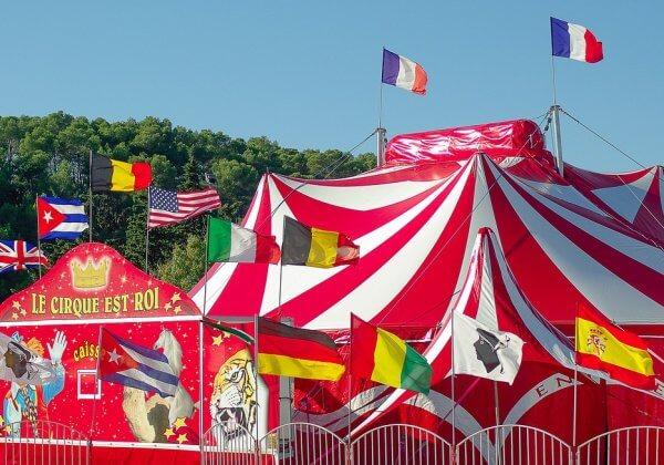cirque animaux