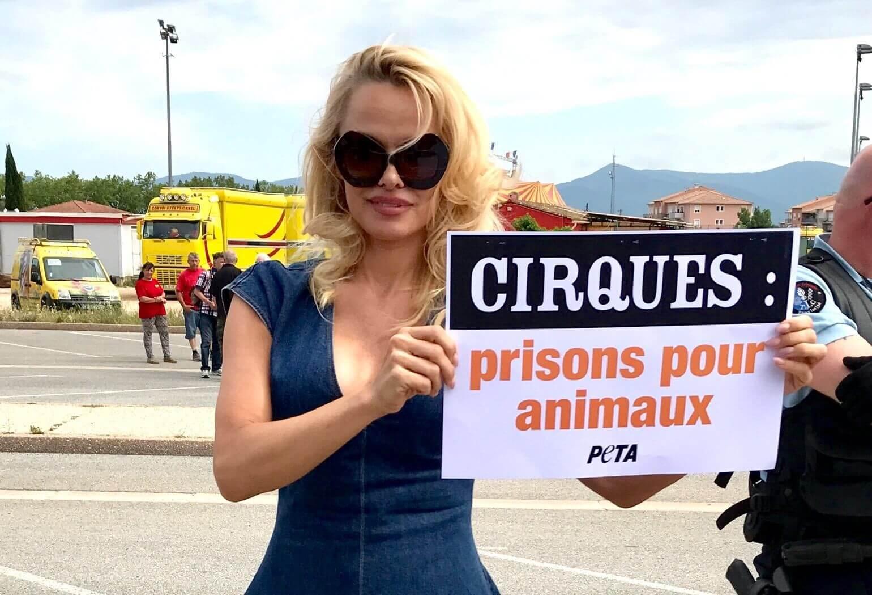 Pamela Anderson nommée « Personnalité de l'année 2018 »