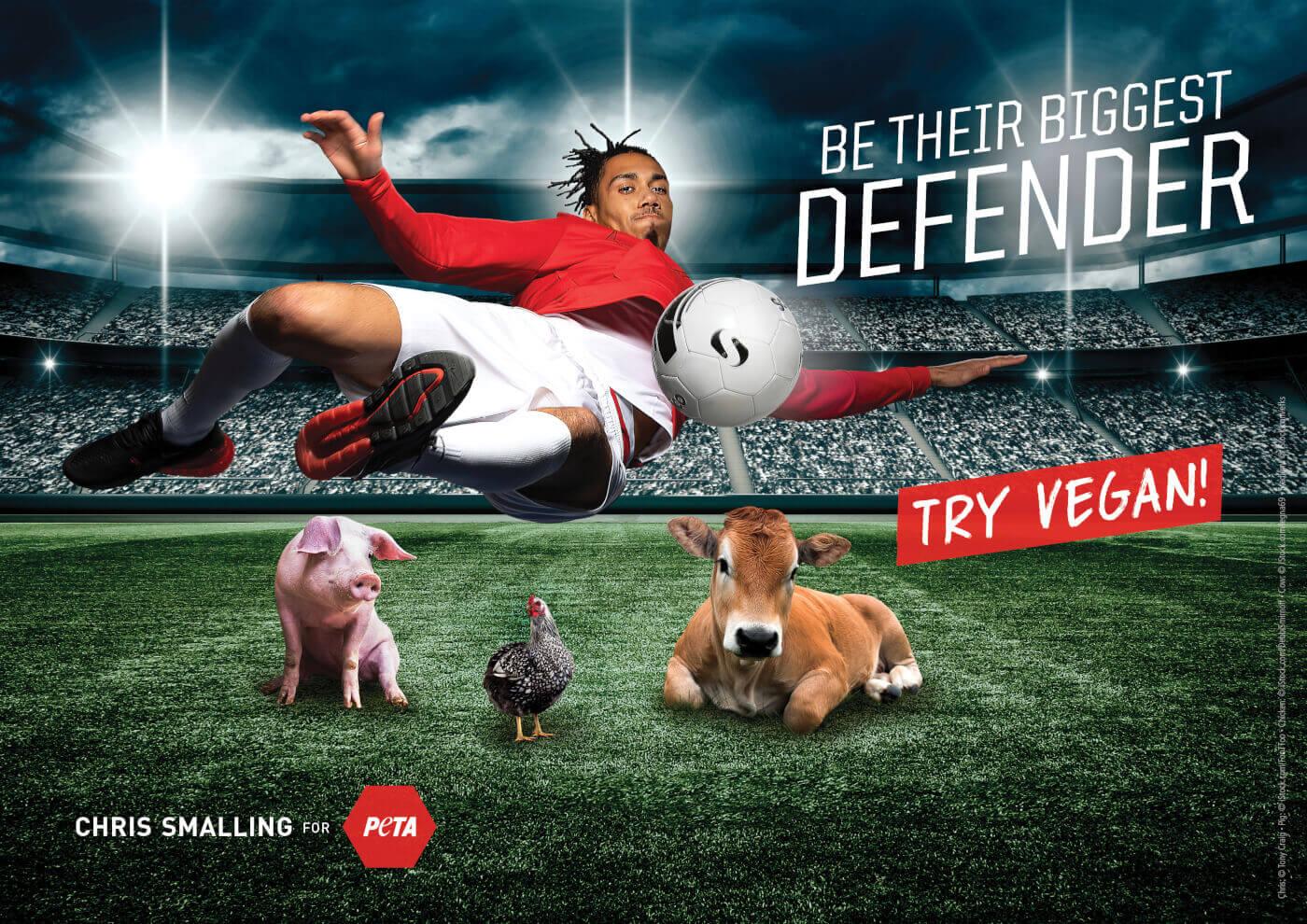 Le footballer Chris Smalling vole au secours des animaux