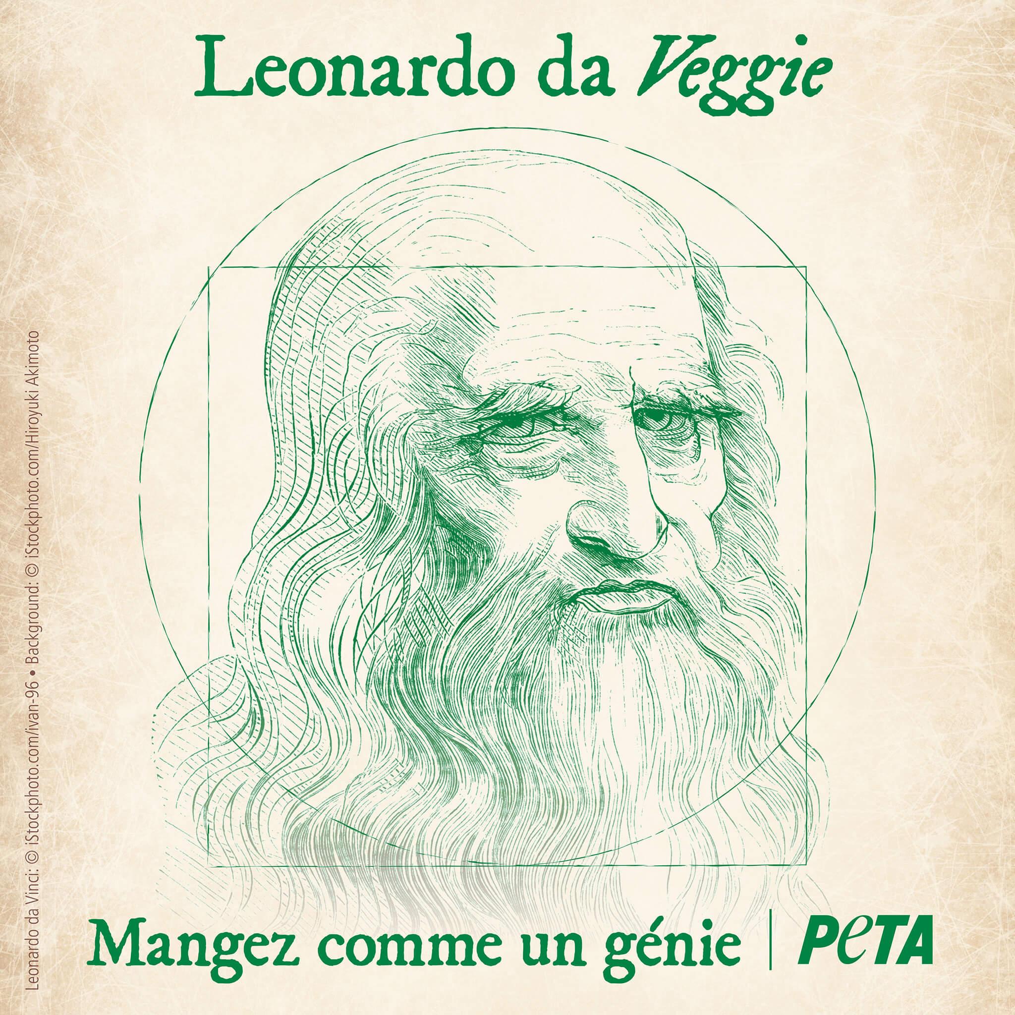 Léonard de Vinci avait 500 ans d'avance en terme de cause animale