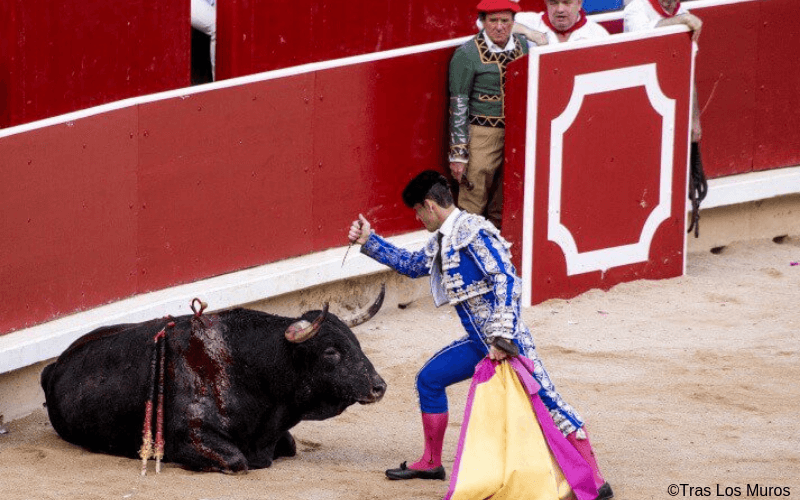 VIDÉO : Des militants sautent dans les arènes pour protester contre la corrida