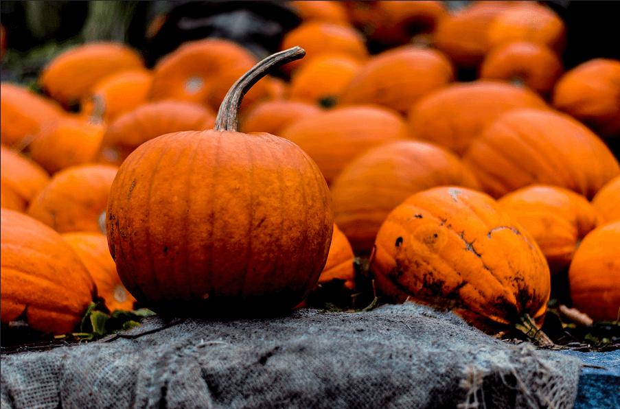 Cinq recettes véganes et horriblement savoureuses pour Halloween