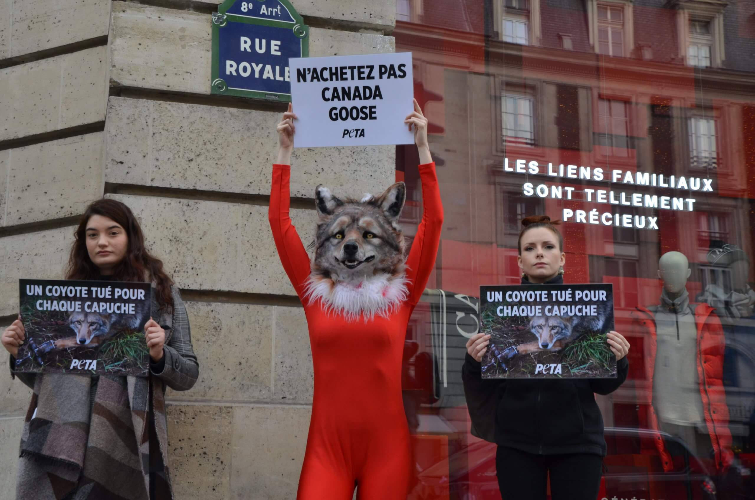 Un « coyote » piégé et ensanglanté proteste contre l'ouverture du premier magasin Canada Goose parisien