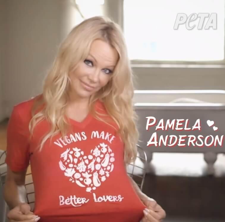 vegan t shirt peta