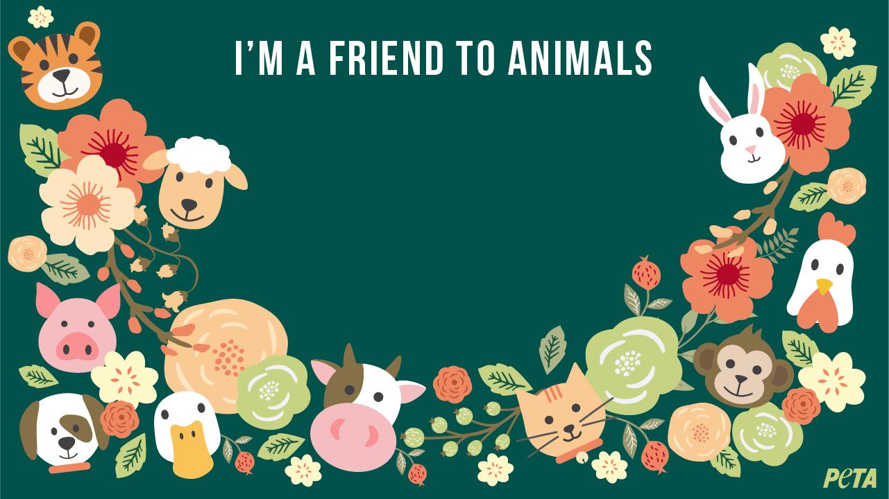 Des arrière-plans Zoom gratuits qui aident les animaux