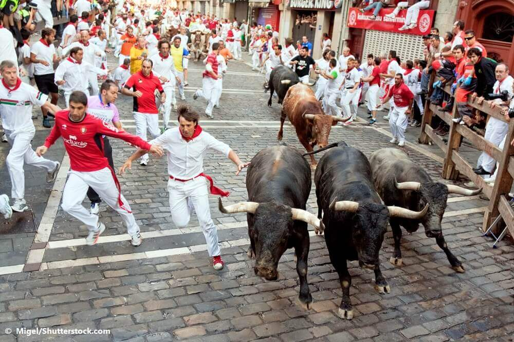 Les fêtes de Pampelune de nouveau annulées – les taureaux échappent à une mort sanglante