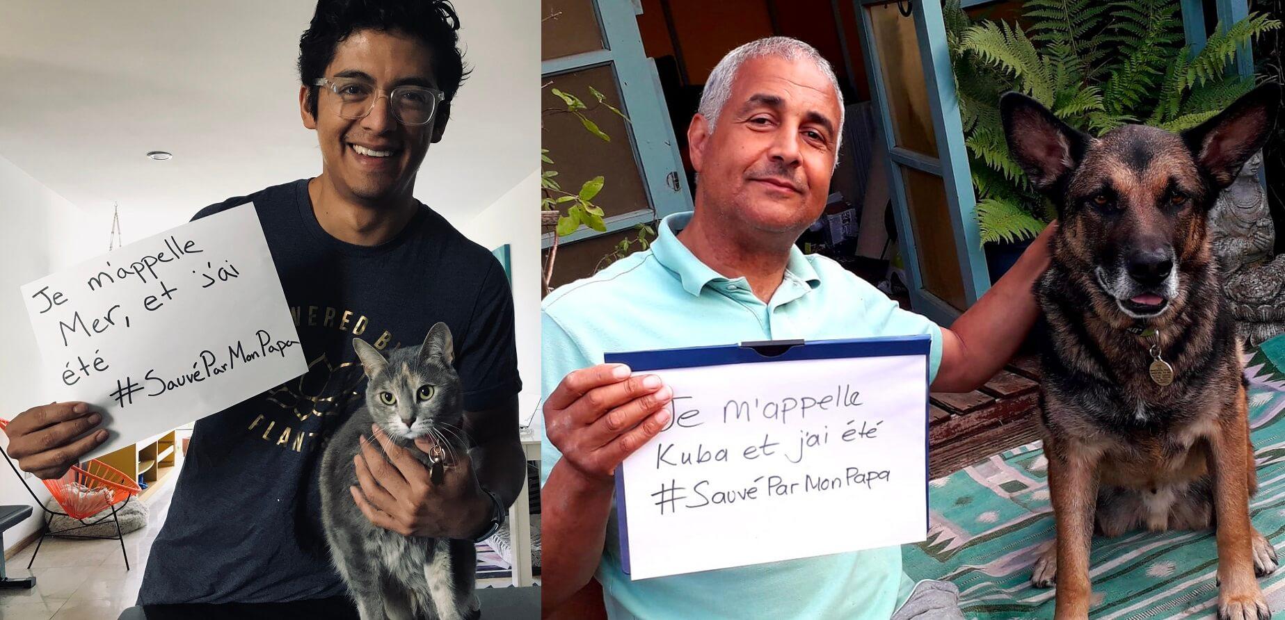 #SauvéParMonPapa : célébrez la fête des Pères avec ces animaux chanceux