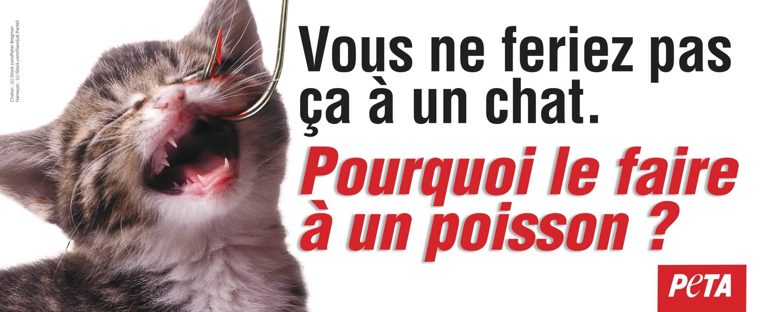 PETA demande une affiche en bord de rivière après la mort de milliers de poissons