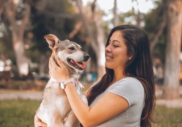 Comment protéger votre chien contre les enlèvements