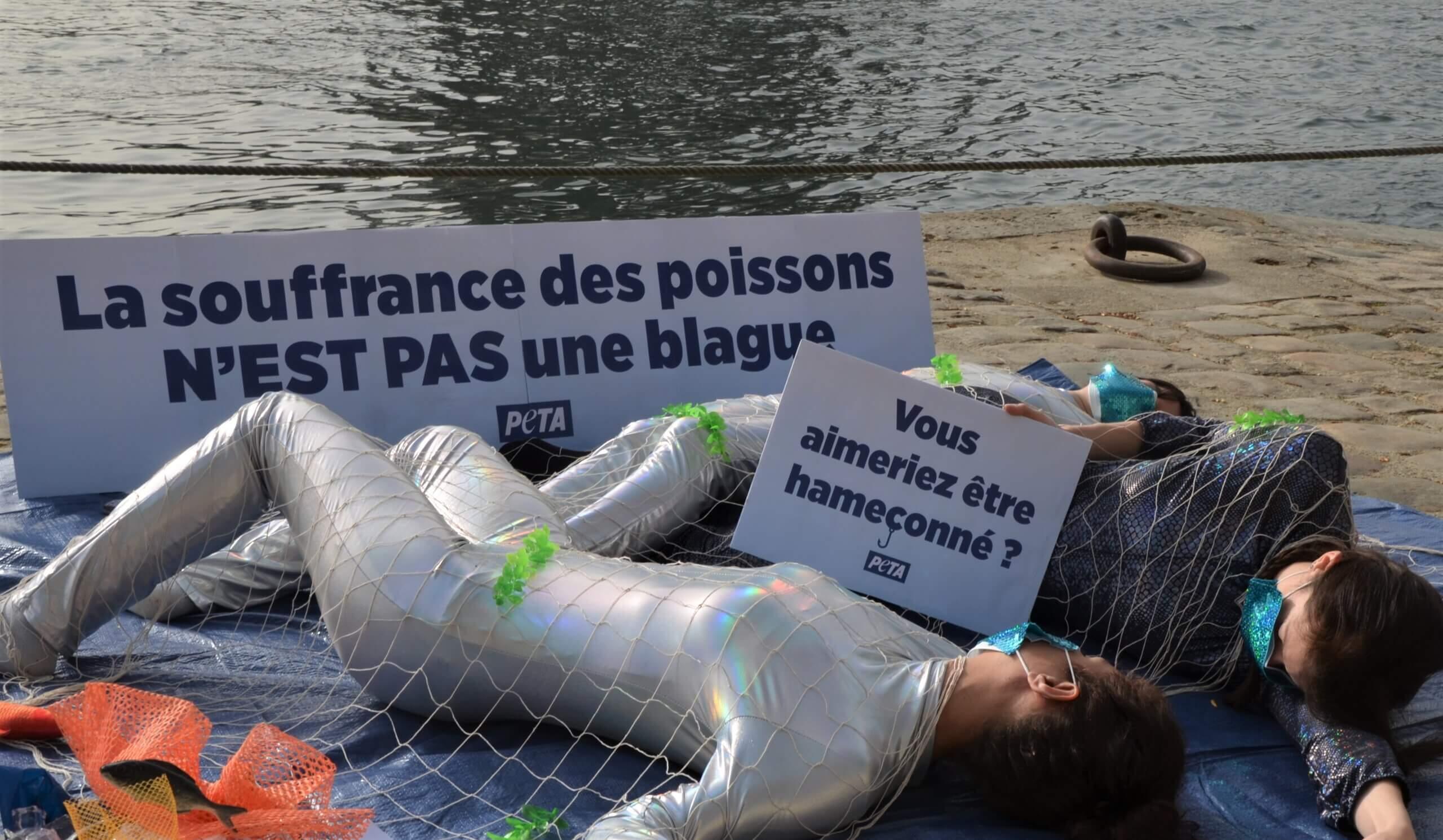« La souffrance des poissons n'est pas une blague » rappelle PETA
