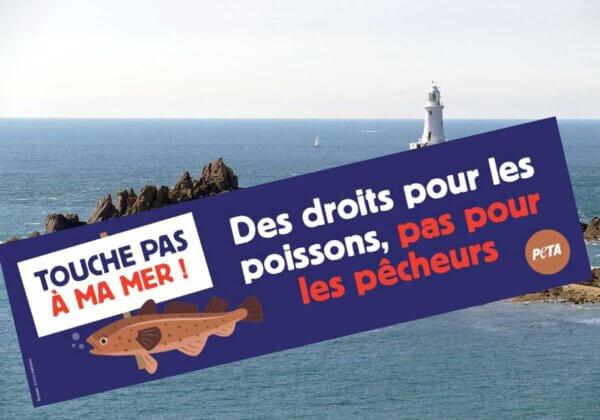 Jersey : une campagne de PETA demande des droits pour les poissons, pas pour les pêcheurs