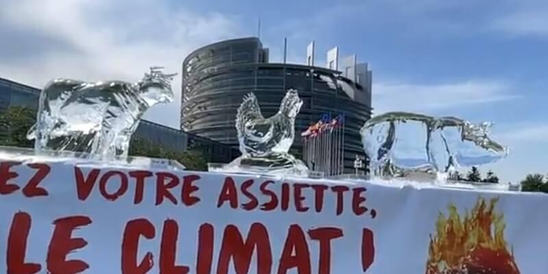 Des « animaux » fondent devant le Parlement européen pour appeler les politiques à passer au végétal