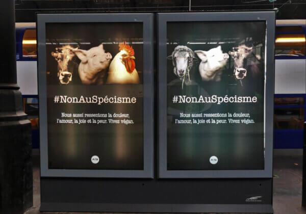 Journée mondiale pour la fin du spécisme : des animaux envahissent Paris et implorent « vivez végan »