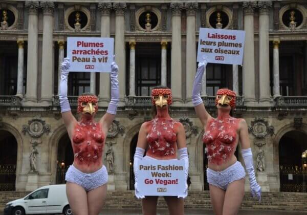 Paris Fashion Week : des militantes « plumées à vif » dénoncent la cruauté du duvet