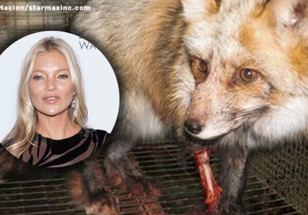 Kate Moss va-t-elle renoncer à la fourrure ?